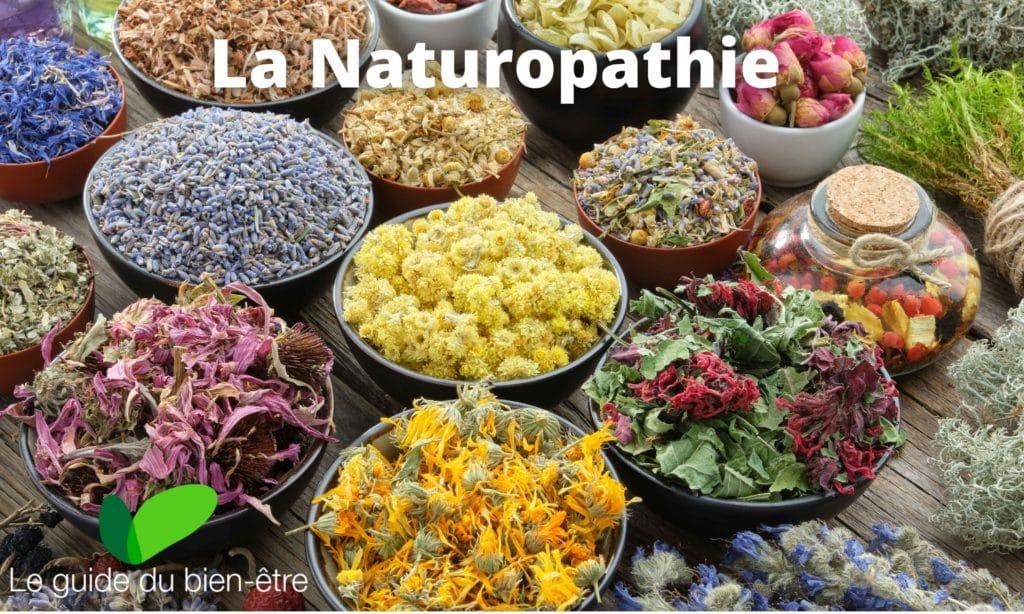 Naturopathie, méthode douce avec moyens naturels